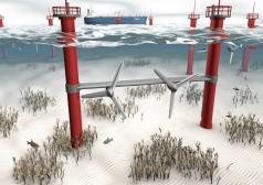 Energia marină